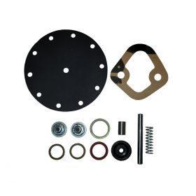 1954 1955 1956 Cadillac AC Type 4269 Fuel Pump Rebuild Kit REPRODUCTION Free Shipping In The USA